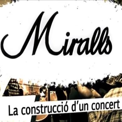 Miralls vídeo